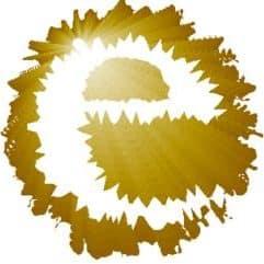 elinsa-e-circle
